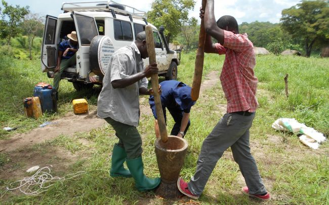 Crop Livestock Protection Image 06
