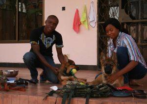Detection Dog Training Image 05