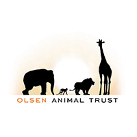 Pams foundation support olsen animal trust