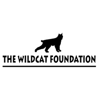 Pams foundation support the wild cat foundation