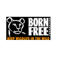 Pams foundation support born free foundation